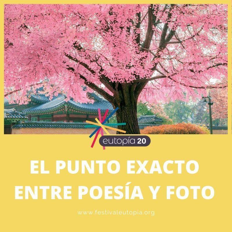 EL-PUNTO-EXACTO-ENTRE-POESIA-Y-FOTO